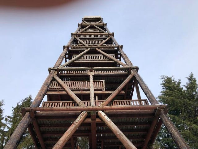Holzbau Brandt - Beginn der Sanierung des Aussichtturms - Der-erste-Tag-Turm in  Solling - Niedersachsen